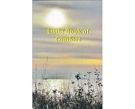 Little Book of Comfort by Lesley Shams