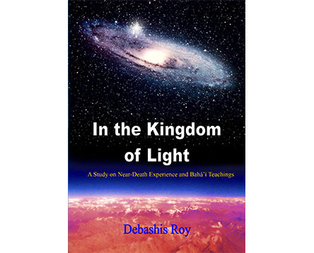In the Kingdom of Light by Debashis Roy